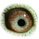 B3150591 14 Skyfall eye b